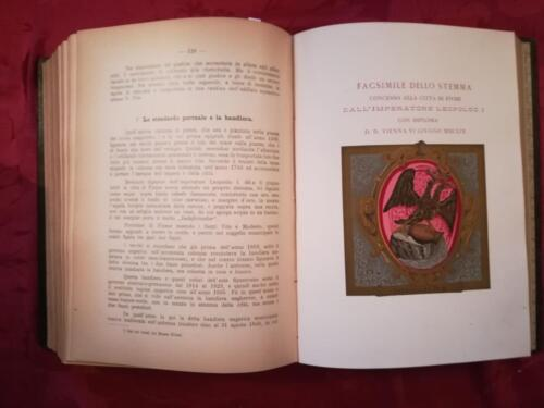 """Veduta del """"Facsimile dello stemma concesso alla città di Fiume dall' imperatore Leopoldo I""""."""