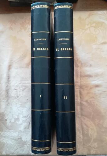 Dorsi dei due volumi del Belgio di Lemonnier.