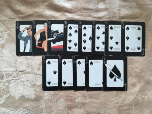 Veduta delle 13 carte di picche.