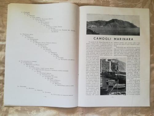 Veduta di Camogli Marinara.