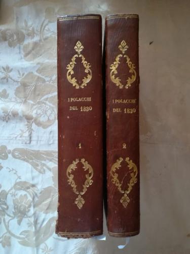 Dorso in pelle dei due volumi con scritte in oro.