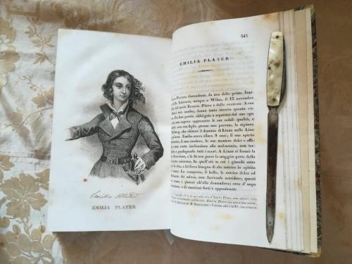 """Una delle numerose tavole litografiche.""""Emilia Plater"""" e la sua storia."""