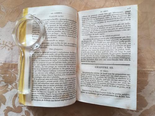 Uno dei capitoli e veduta delle condizioni interne del libro.